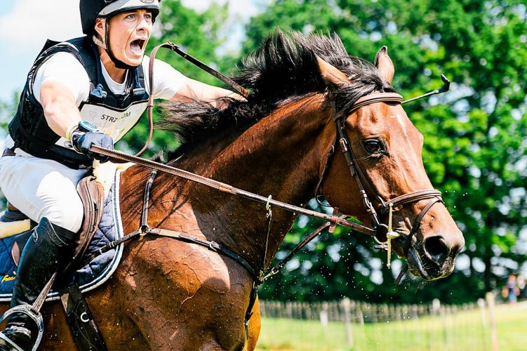 Pompo Mompo - Best Equestrian and Horse Photography